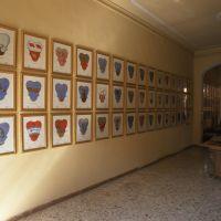 Palazzo della Partecipanza Agraria, interno - zappaterra - Cento (FE)