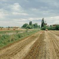 paesaggio agreste - Samaritani - Cento (FE)