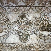 Abbazia di Pomposa. Pavimento a mosaico della chiesa. - sconosciuto - Codigoro (FE)