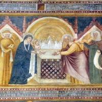 Scuola bolognese, ciclo dell'abbazia di pomposa, 1350 ca., nuovo testamento, 05 presentazione al tempio - Sailko - Codigoro (FE)