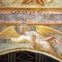 Scuola bolognese, ciclo dell'abbazia di pomposa, 1350 ca., apocalisse, 14 angelo col vangelo 2 - Sailko - Codigoro (FE)