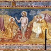 Scuola bolognese, ciclo dell'abbazia di pomposa, 1350 ca., nuovo testamento, 06 battesimo di gesù - Sailko - Codigoro (FE)