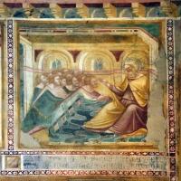 Scuola bolognese, ciclo dell'abbazia di pomposa, 1350 ca., vecchio testamento, 10 i fratelli di giuseppe e giacobbe - Sailko - Codigoro (FE)