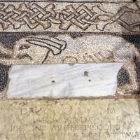 Pomposa, abbazia, interno, pavimento 08 elefante - Sailko - Codigoro (FE)