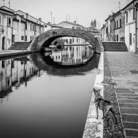 Ponte San Pietro - Attenti al cane - Vanni Lazzari - Comacchio (FE)
