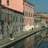 il paese - Samaritani - Comacchio (FE)