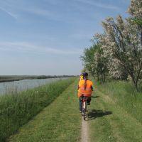 Valli e Salina, percorso in bicicletta - Servizio turismo - Comacchio (FE)