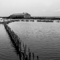 Le Valli con le antiche stazioni di pesca 1 - Paola Pedone - Comacchio (FE)
