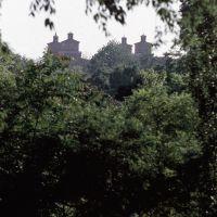 Castello Estense in lontananza - Baraldi - Ferrara (FE)