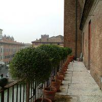 Castello Estense. Scorcio del Giardino degli Aranci - Baraldi - Ferrara (FE)