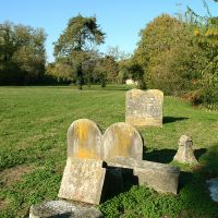 Cimitero ebraico. Lapidi - Baraldi - Ferrara (FE)
