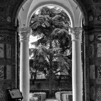 Natura Viva Palazzo Costabili - Patrizia Zontini - Ferrara (FE)