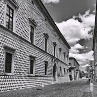2016 ferrara 255 bn - Sansa55 - Ferrara (FE)