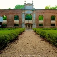 Giardino Palazzo dei Diamanti2 - Andrea.Montibeller - Ferrara (FE)
