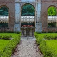 Palazzo dei Diamanti giardino - Andrea.Montibeller - Ferrara (FE)