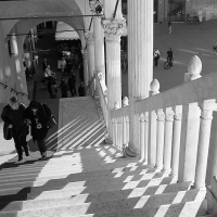 Lo scalone dei Duchi 01 - PAOLO BENETTI - Ferrara (FE)