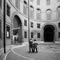 In coppia alla rotonda - PAOLO BENETTI - Ferrara (FE)