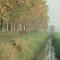 canale di irrigazione - Smaritani - Fiscaglia (FE)