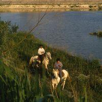 passeggiata a cavallo con Castello Estense - Rebeschini - Mesola (FE)