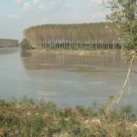valli - Samaritani - Mesola (FE)