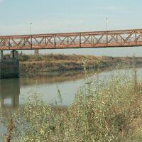 Ariano Ferrarese, ponte - Samaritani - Mesola (FE)
