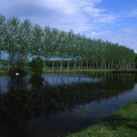 Azianda agricola Le Pradine - Meneghetti - Mirabello (FE)
