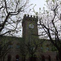 Castello Lambertini - Meneghetti - Poggio Renatico (FE)