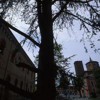 Scorcio del Castello Lambertini e della chiesa di San Daniele - Meneghetti - Poggio Renatico (FE)