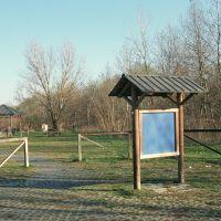 Bosco della Panfilia - Samaritani - Sant'Agostino (FE)