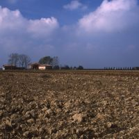 Campagna - Meneghetti - Sant'Agostino (FE)