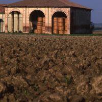 Architettura rurale - Meneghetti - Vigarano Mainarda (FE)