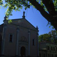 Chiesa di San Leo a Voghenza. Facciata - Meneghetti - Voghiera (FE)