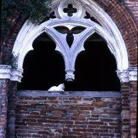 Delizia del Belriguardo. Finestra gotica - Zappaterra - Voghiera (FE)