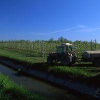 Lavori agricoli - Meneghetti - Voghiera (FE)