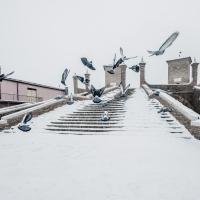 Neve sul piazzale pescheria a Comacchio - Francesco-1978 - Comacchio (FE)