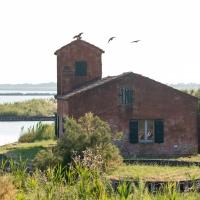 Tipico casone da pesca, Valli di Comacchio - Francesco-1978 - Comacchio (FE)