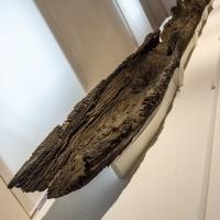 - Museo Delta Antico - Comacchio - 24 - Vanni Lazzari - Comacchio (FE)