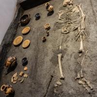 - Museo Delta Antico - Comacchio - 30 - - Vanni Lazzari - Comacchio (FE)