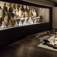 - Museo Delta Antico - Comacchio - 16 - - Vanni Lazzari - Comacchio (FE)