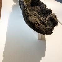 - Museo Delta Antico - Comacchio - 26 - - Vanni Lazzari - Comacchio (FE)