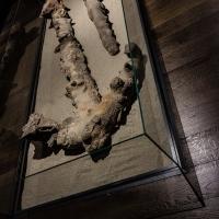 - Museo Delta Antico - Comacchio - 41 - - Vanni Lazzari - Comacchio (FE)
