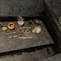 - Museo Delta Antico - Comacchio - 21 - - Vanni Lazzari - Comacchio (FE)