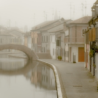 First autumn fog in Comacchio-4 - Massimo Saviotti - Comacchio (FE)