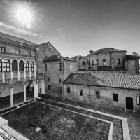 Ferrara-7 - Xyzenyx - Ferrara (FE)
