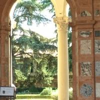Un scorcio sul giardino - Alison Mary Lazzari - Ferrara (FE)