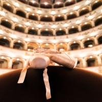 Teatro comunale Ferrara visione d'insieme - Francesco-1978 - Ferrara (FE)