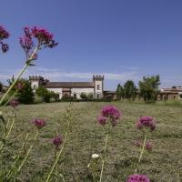 Delizia del Verginese, tra arte e natura - Antonella Balboni - Portomaggiore (FE)
