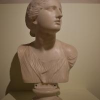 Busto di Niobe, collezione Riminaldi, Palazzo Bonacossi, Ferrara 01 - Nicola Quirico - Ferrara (FE)