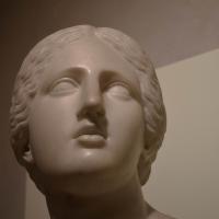 Busto di Niobe, collezione Riminaldi, Palazzo Bonacossi, Ferrara 02 - Nicola Quirico - Ferrara (FE)