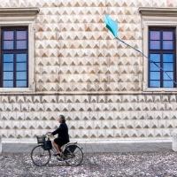 Palazzo diamanti ferrara - TIEGHI MAURIZIO - Ferrara (FE)